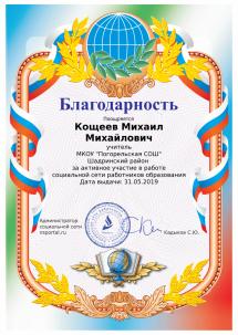 Благодарность  за активное участие в работе социальной сети работников образования 31.05.19