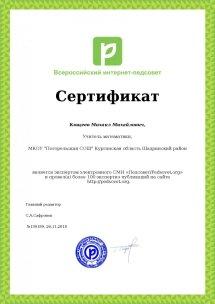 Сертификат эксперта  о проведенных экспертизах педагогического сообщества Педсовет