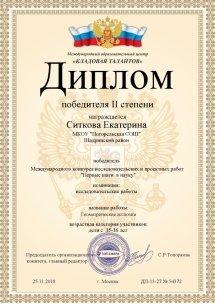 Исследовательский проект  Диплом победитель всероссийского конкурса 2 место Ситкова Екатерина